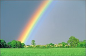 miscarriage and stillbirth - rainbow