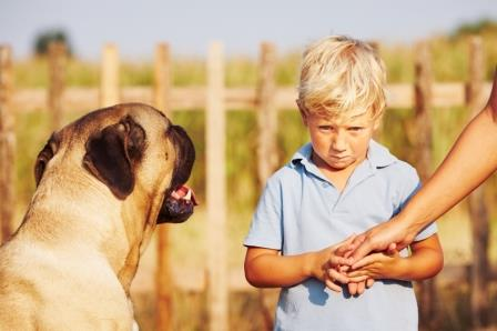 animal phobia in children